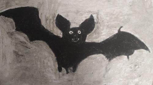 Obrazek galerii Nietoperze nie są straszne. Chrońmy je!