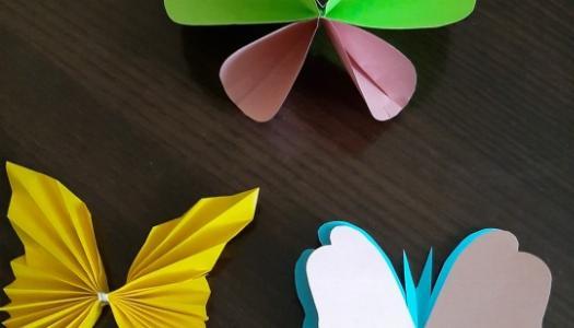 Obrazek newsa Przyroda  budzi się do życia - motyle.