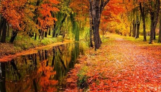 Obrazek newsa Pierwszy dzień jesieni